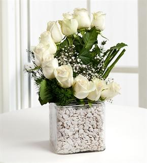 Mutluluk Rüzgarı Beyaz Güller