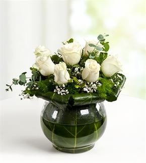 Beyazın Zarafeti Beyaz Güller